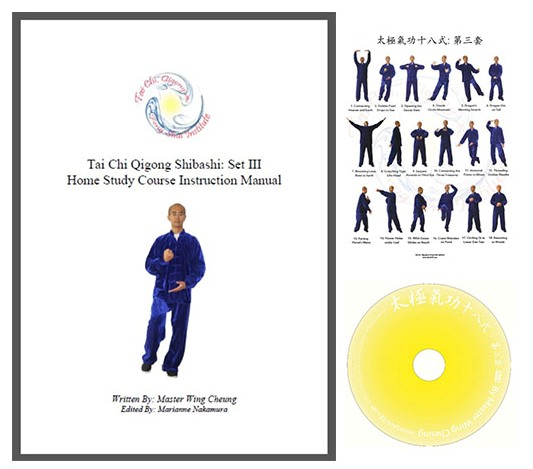 tai chi instructional video download